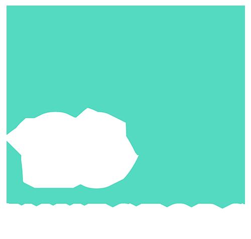 2020 Investors